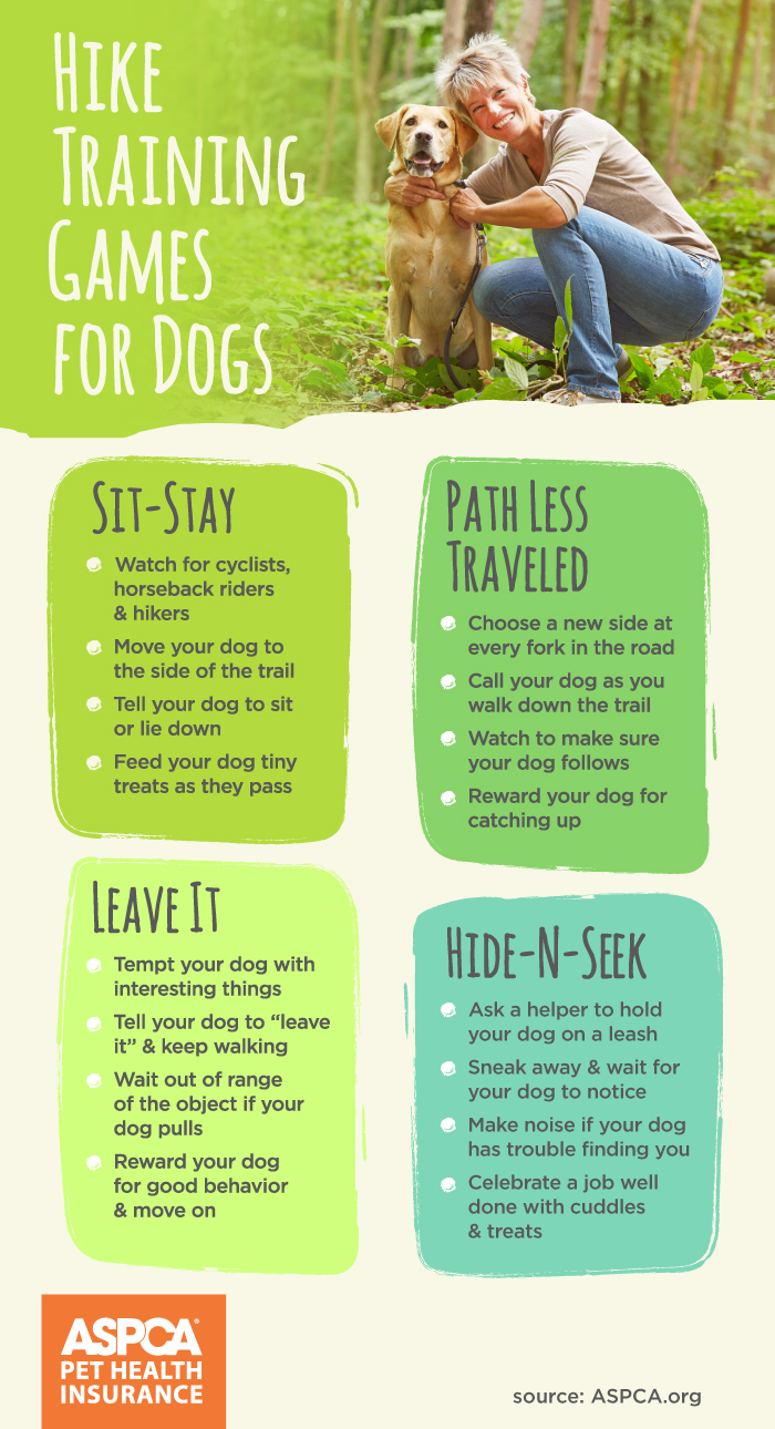 Hike Training Games for Dogs